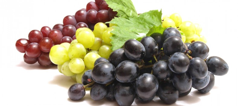 Fake-looking grapes