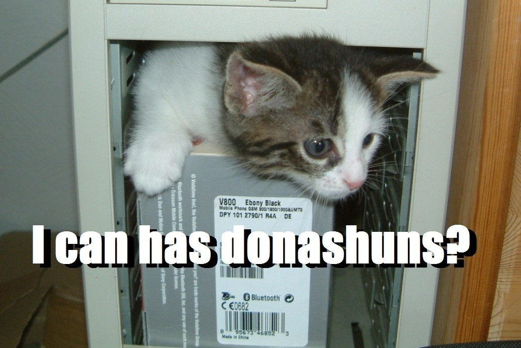 "A kitten in a computer asking ""I can has donashuns?"""