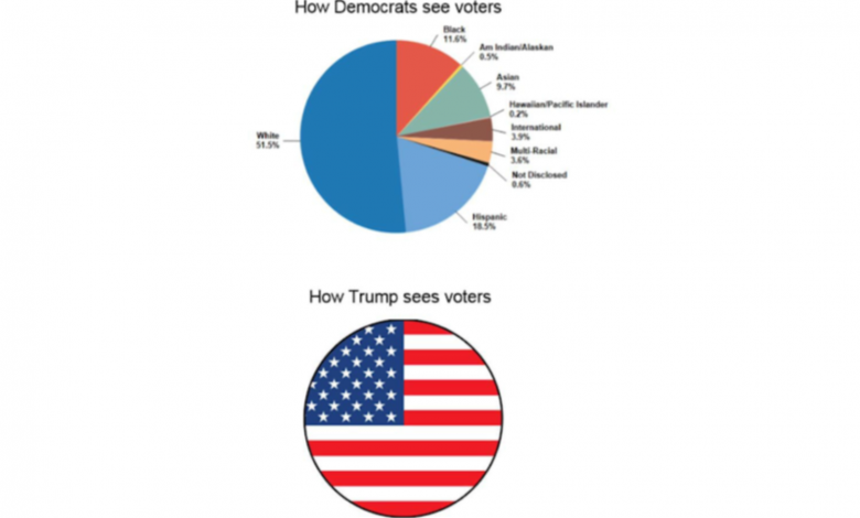 How Trump sees voters pie chart flag